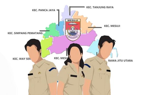 Pendaftaran CPNS Mesuji Tembus 809 Pendaftar, Formasi Bidan Terampil Paling Diminati